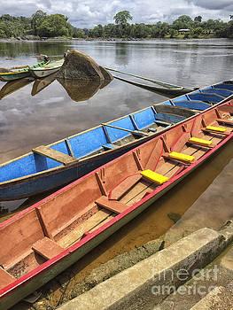 Patricia Hofmeester - Karjoles in the Suriname river