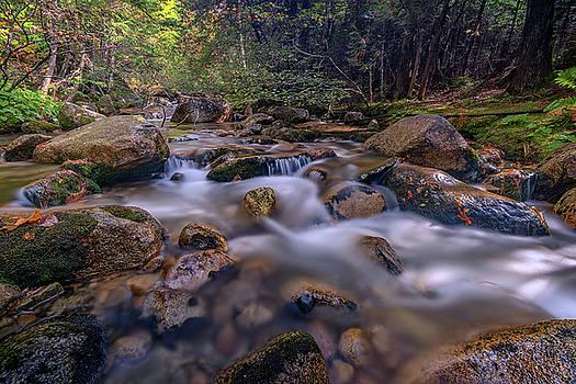 Katahdin Stream by Rick Berk