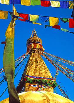 Dennis Cox - Kathmandu Stupa