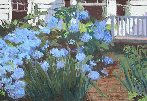 Katie's Hydrangeas by Jan Frazier
