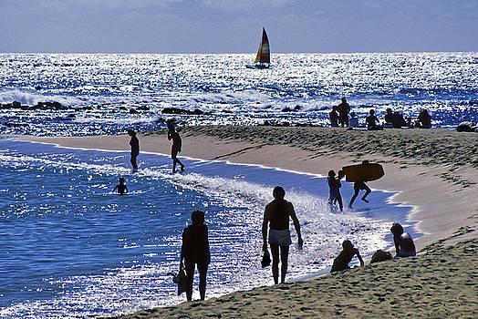 Dennis Cox WorldViews - Kauai Beach