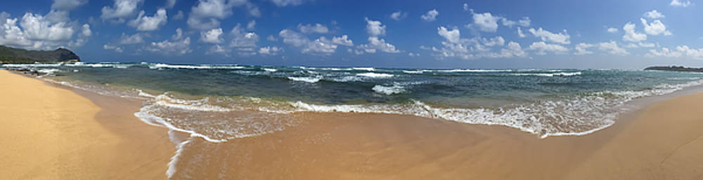Steven Lapkin - Kauai Beach