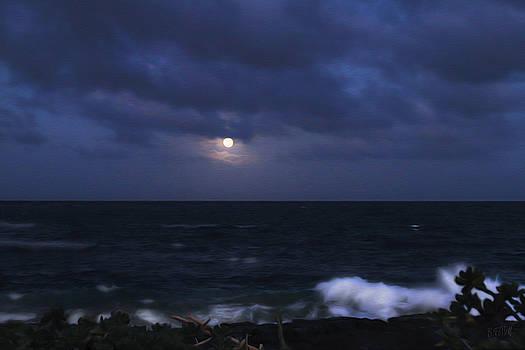 Bonnie Follett - Kauai Moon at Poipu