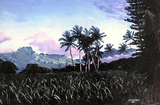 Kauai Morning by Leif Thor Kvammen