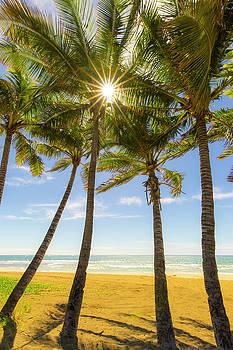 Kauai by Peter Irwindale
