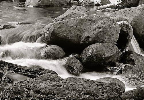 Michael Peychich - Kauai Stream