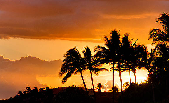 Scott Harris - Kauai Sunset