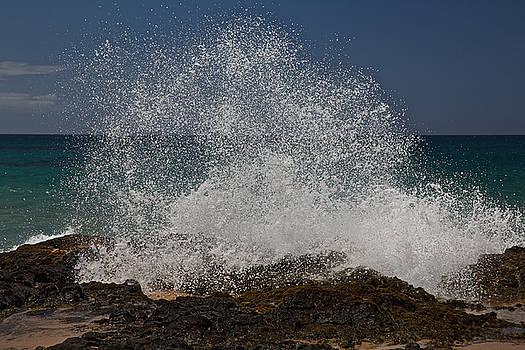 Steven Lapkin - Kauai Surf