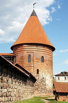 Ramunas Bruzas - Kaunas Castle