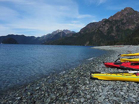 Kayaking Alaska by Teresita Abad Doebley
