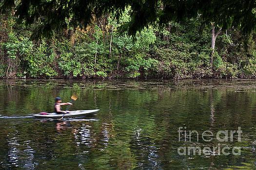 Herronstock Prints - Kayaking on Lady Bird Lake in Zilker Park Austin Texas