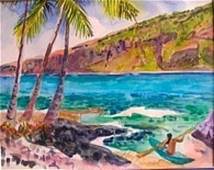 Kealekekua Bay  by Diane Renchler