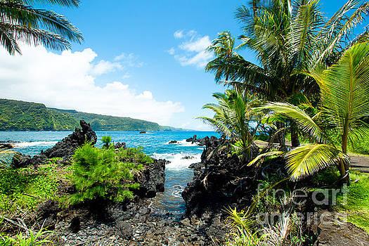 Keanae framed by Palm Trees Maui Hawaii by Sharon Mau