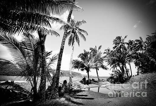 Keanae Landing Maui Hawaii by Sharon Mau