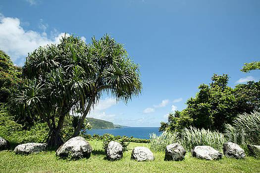 Keanae Mahama Lauhala and the Pacific Ocean Nuaailua Bay Mokuholua Maui Hawaii by Sharon Mau