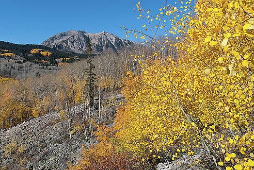Kebler Pass Autumn Mountain Landscape by Cascade Colors
