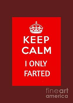 Pd - Keep Calm I Only Farted