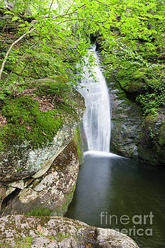 Kees Falls - Caribou Speckled Mountain Wilderness Maine by Erin Paul Donovan