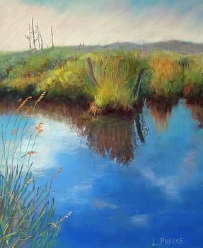Kelderhouse Swamp by Linda Preece