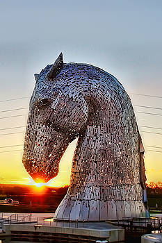 Kelpie Kiss by Andy Griffiths