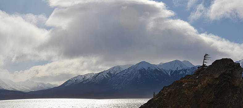 Mike Shaw - Kenai Peninsula