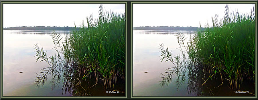 Kennersley Pt Marina 3D Crossview Stereo by Brian Wallace