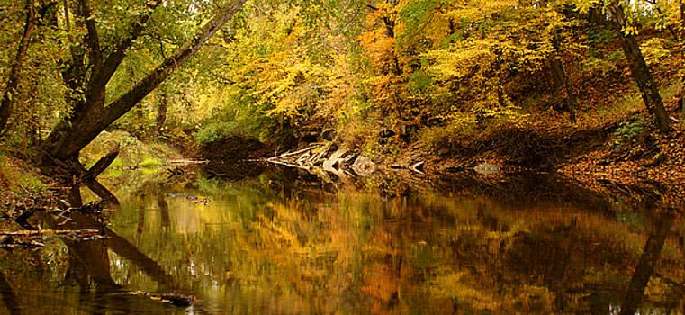 Kentucky Fall by Keith Bridgman