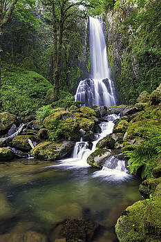 Kentucky Falls by Robert Bynum