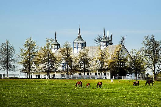 Randall Branham -  Revised Kentucky Horse Barn Hotel 2