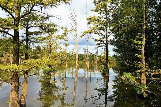 Kathy Kelly - Kentucky Lake with Tupelo