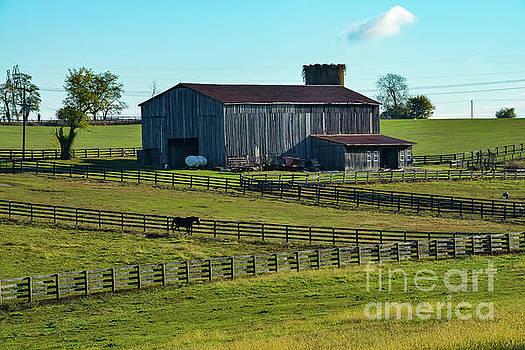Bob Phillips - Kentucky Landscape