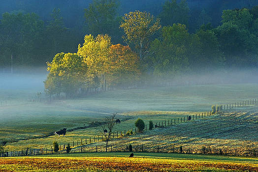 Kentucky Morning First Light by Keith Bridgman