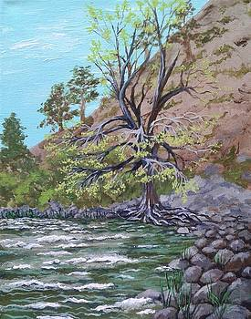 Kern River Kernville California by Katherine Young-Beck