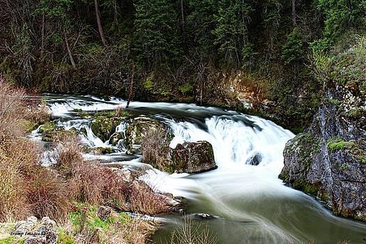 Kettle Falls by Wesley Nesbitt