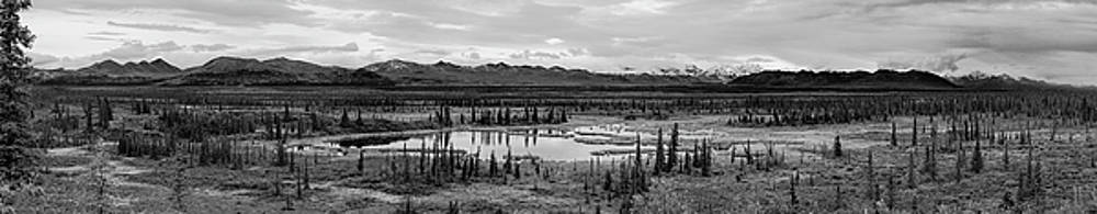 Kettle Pond and the Alaska Range by Peter J Sucy