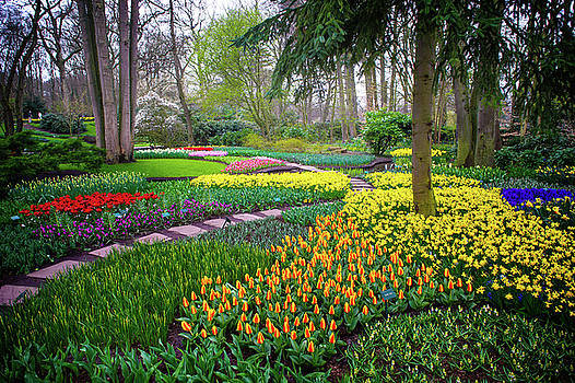 Jenny Rainbow - Keukehof Botanic Garden 2015