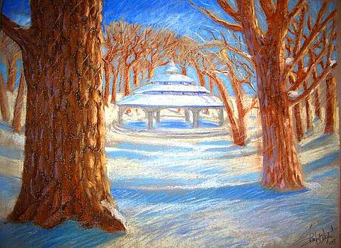 Kew Park in Winter by Sharon Wright