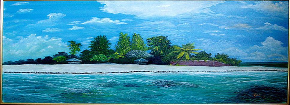 Key West beach by Peter Kulik