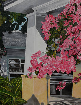 Key West Bougainvillea by John Schuller