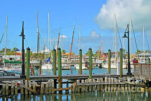 Key West Docks by Jost Houk