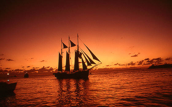 Art America Gallery Peter Potter - Red Sunset Sky At Key West Florida