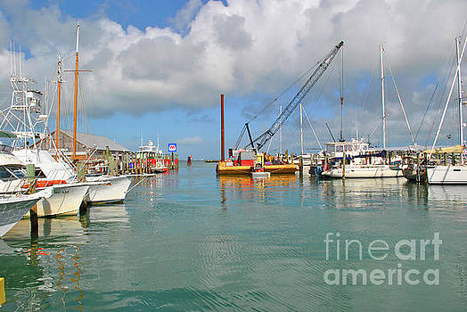 Key West Marina by Jost Houk