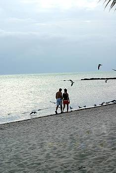 Marty Koch - Key West