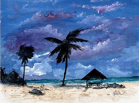 Key West stormy by Peter Kulik