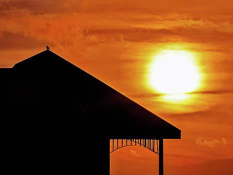 Key West Sunset Silhouette 2 by Bob Slitzan