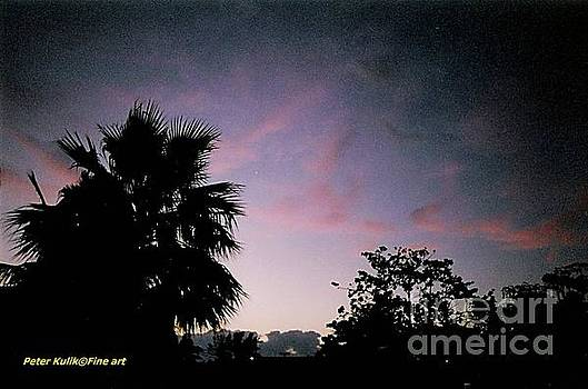 Key West violet by Peter Kulik