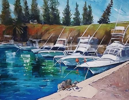 Kiama Harbour by Kathy  Karas