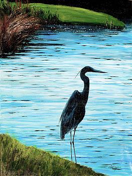 Kiawah Heron by Maryann Boysen