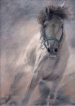 Kickin' Up Dust by Sue Ziegler