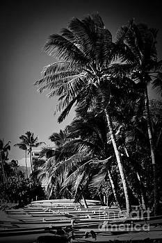 Kihei Sugar Beach Maui Hawaii by Sharon Mau